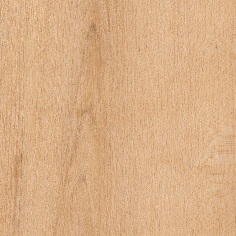 Amtico International: Warm Maple