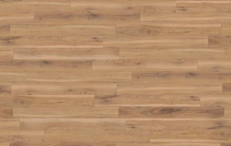 Amtico International: Canopy Oak - SS5W1020