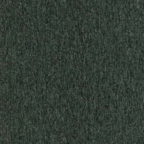 Foundry Forest Swatch Image