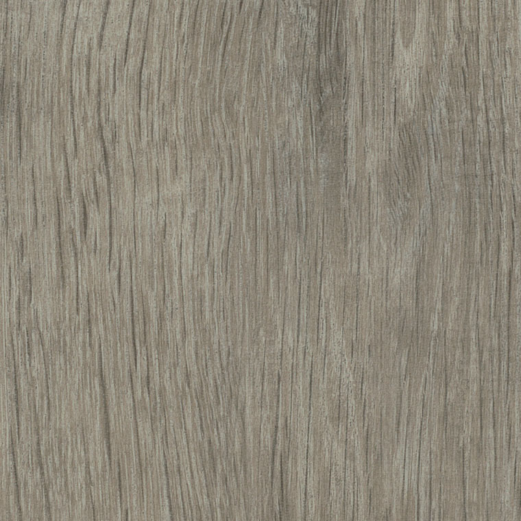 Sash Oak - AM5W3032 swatch image