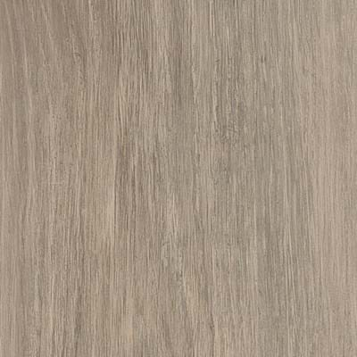 Bergen Oak Swatch Image