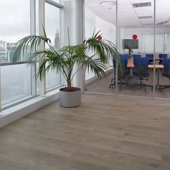Amtico Spacia in Sun Bleached Oak (SS5W2531)
