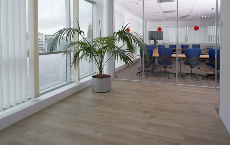Sun Bleached Oak Beautifully Designed Lvt Flooring From
